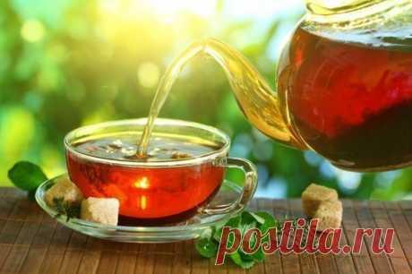 Чай для курильщиков - Страна Полезных Советов - медиаплатформа МирТесен