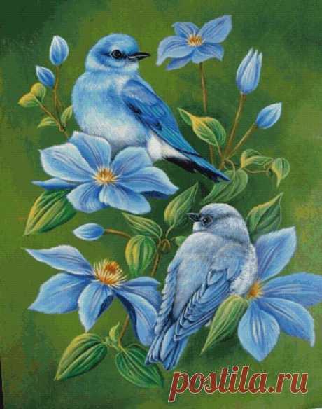Схема вышивки «птицы» - Вышивка крестом