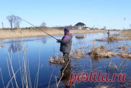 Рыбалка в апреле! | Блоги о рыбалке, ремонте и интерьере, даче и огороде, рецептах, красоте и правильном питании