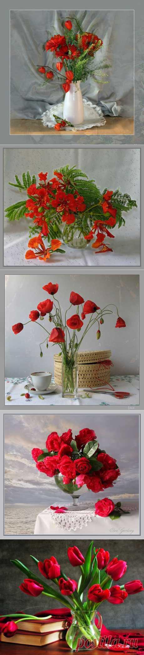 Натюрморт Красные цветы.