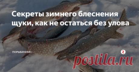 Секреты зимнего блеснения щуки, как не остаться без улова Тактика успешной рыбалки...