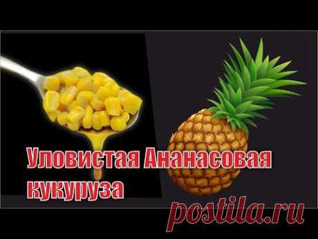 Особенная Кукуруза для трофейной рыбы - YouTube