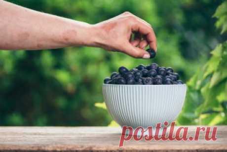 Псориаз и диеты: полезные и вредные