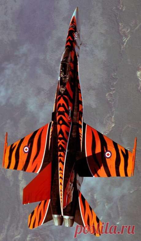 CF-18  авиация
