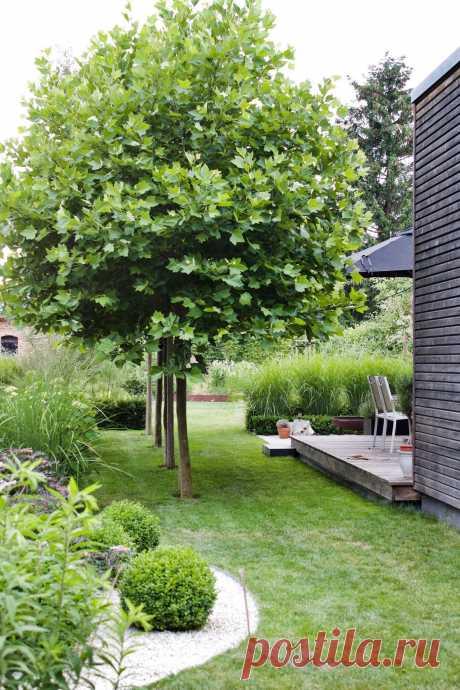 Der Junigarten. Immer überraschend neu. - dieartige // DESIGN STUDIO // Raumplanung