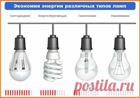 Если вы хотите экономить на электроэнергии, пользуйтесь светодиодными лампами | В темпі життя