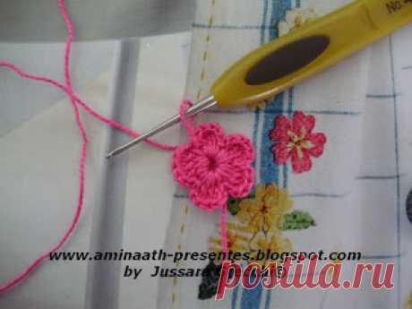 Aminaath Presentes: PAP miosótis
