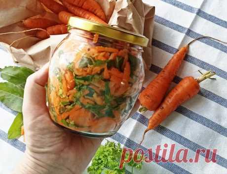 Соседи отдали много некондиционной моркови, не подлежащей хранению. Как я заготавливаю её на зиму | Дауншифтеры | Яндекс Дзен