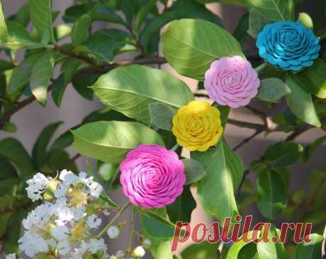 Цветок из тесьмы своими руками — Мастер-классы на BurdaStyle.ru
