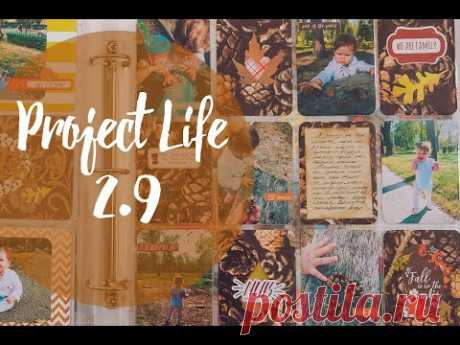 Project Life #2.9