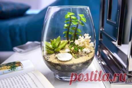 Как правильно озеленить дом? | Растения
