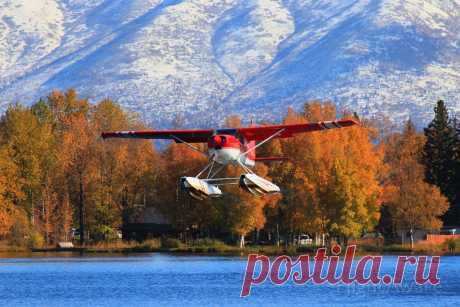Фото 185E (N4708Q) - FlightAware