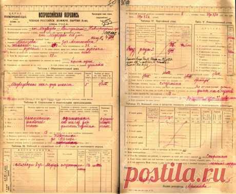 Из каких переписей населения вы узнаете о своих предках   История одной семьи   Яндекс Дзен