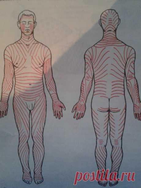 Применяется самомассаж для того, чтобы снять застой лимфы, снять усталость, оздоровить и укрепить тело. Вообще лимфа движется очень медленно, а массаж ускоряет ее ток, улучшая обмен веществ и снабжая ткани тела лучшим притоком кислорода. Поэтому часто такой массаж рекомендуют при похудении. Основной принцип любого массажа, в том числе и самомассажа – все его приемы делаются по ходу тока лимфы. Движение лимфы происходит в человеческом организме от периферии к сердцу. Направ...