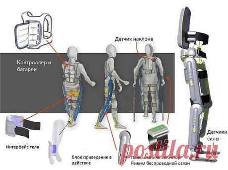 Персональный экзоскелет ReWalk