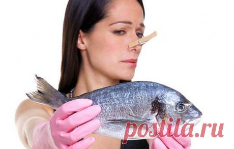 ⭕Что делать, если рыба пахнет тиной ?👇 | 🐟 РЫБА4ОК | Яндекс Дзен