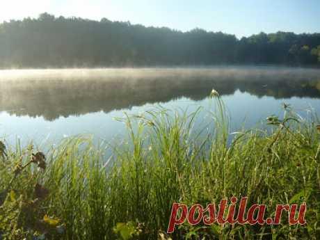 Красоты Украины: Озеро в Черном лесу