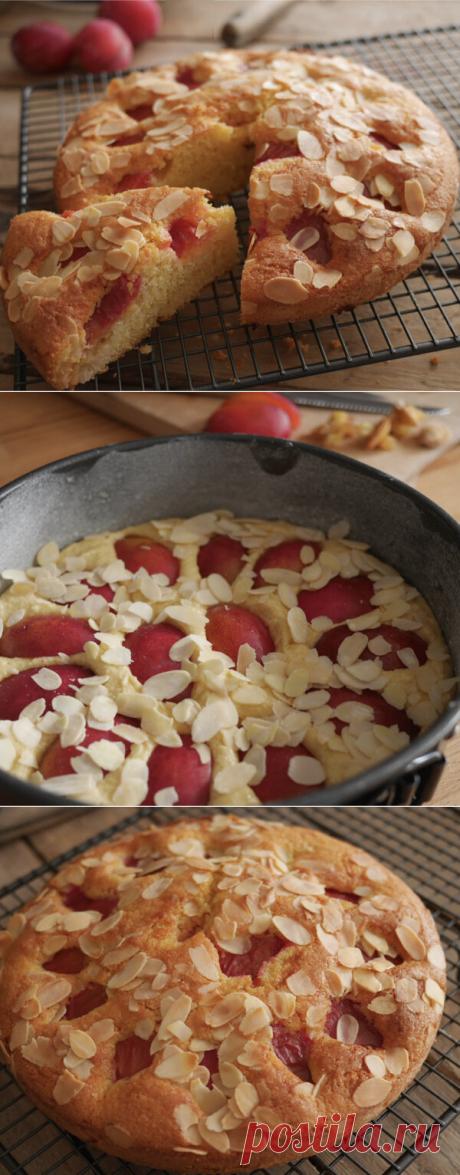 Нежный пирог со сливами: быстро и просто | ChocoYamma | Яндекс Дзен  Теперь этот пирог довольно регулярно появляется нас на столе. Да и вообще его идею можно легко адаптировать и готовить такие пироги с любыми яркими ягодами. Попробуйте сами, и вы со мной согласитесь! Этот супер мягкий и нежный торт с терпкой кислинкой сливы получается просто божественным!