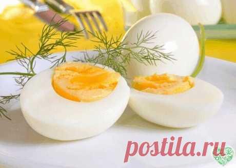 ЕСЛИ НАДО СРОЧНО ПОХУДЕТЬ.. Яичная диета Знаете ли вы, что продуманная до мелочей система питания поможет быстро похудеть на 10 кг всего лишь за 2 недели. Этот метод похудения идеален – если нужно срочно похудеть! Не используй его дольше – может быть сильная потеря веса На такой диете не придется голодать: яйца и правда очень сытный продукт. Ознакомься с этим меню, тебе наверняка захочется похудеть при помощи данных продуктов… Отказавшись от углеводов, ты сможешь быстро по...