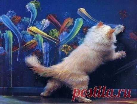 Pinta la vida)