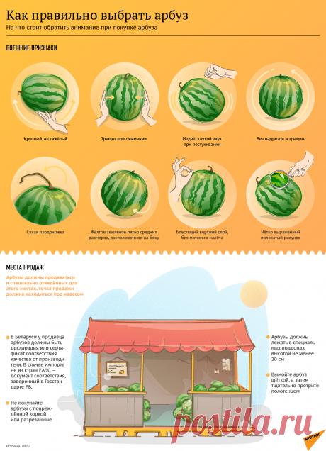 Как выбрать самый вкусный арбуз