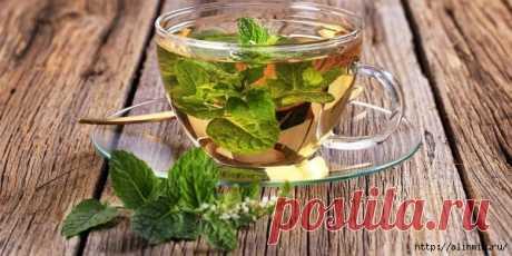 Как правильно употреблять мятный чай, чтобы избавиться от болячек