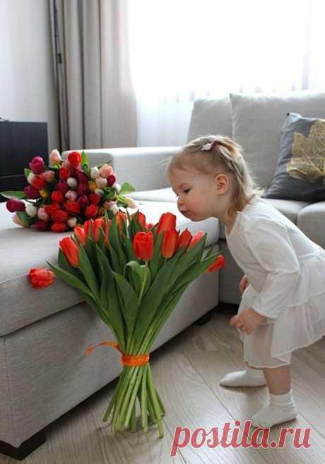 (7) Тhe beautiful world of Ludmila ( Красивият свят на Людмила )