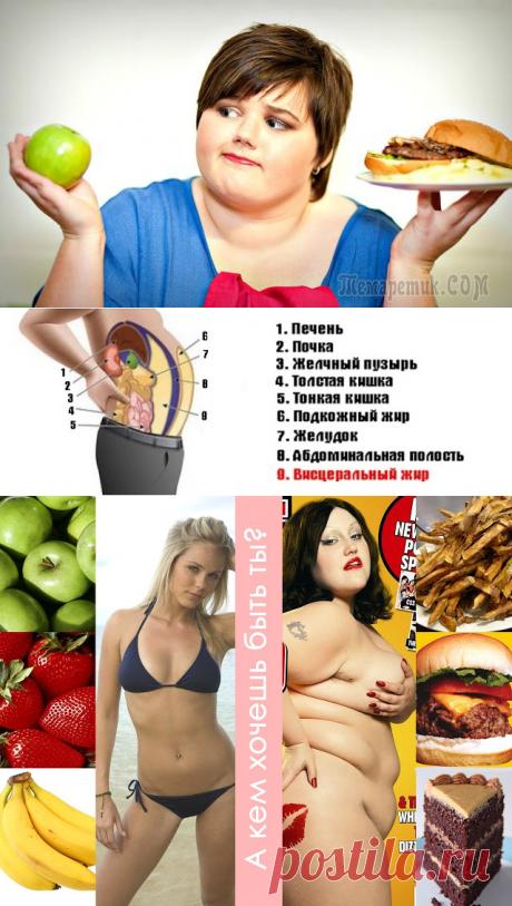 Висцеральный жир и чем он опасен