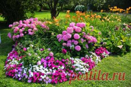 Цветник с обложки: как правильно подобрать цветовые решения для вашего сада