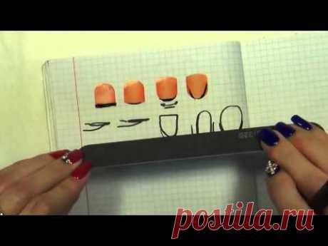 El esquema opila 4 h de las formas de las uñas