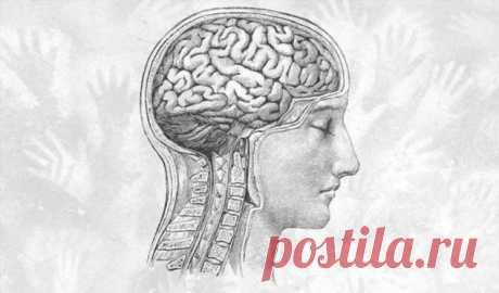 6 привычек здорового мозга | Краше Всех