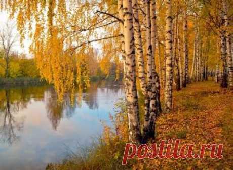 19 сентября — Михайлов день | Astro-ru.ru
