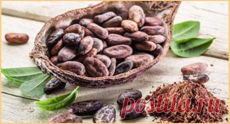 Какао-порошок для похудения