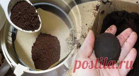 Прекратите выбрасывать кофейную гущу! 17 гениальных способов их повторного использования в домашних условиях!Вы будете удивлены! — Копилочка полезных советов
