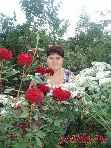 Нелля Варава