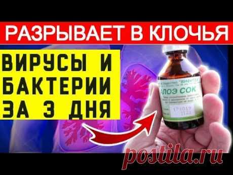 ★ ЗАЩИТА ваших лёгких ОТ ВИРУСА. Поднятие иммунитета ...