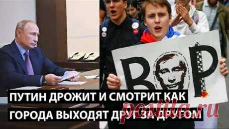 Путин дрожит и смотрит как выходит вся страна. Суббота, 01.08 кормим голубей!