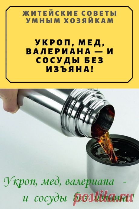 Укроп, мед, валериана — и сосуды без изъяна! | Житейские Советы