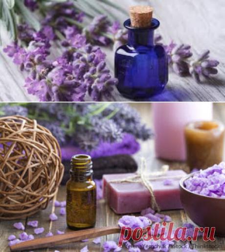 Масло лаванды применение- как применять масло лаванды