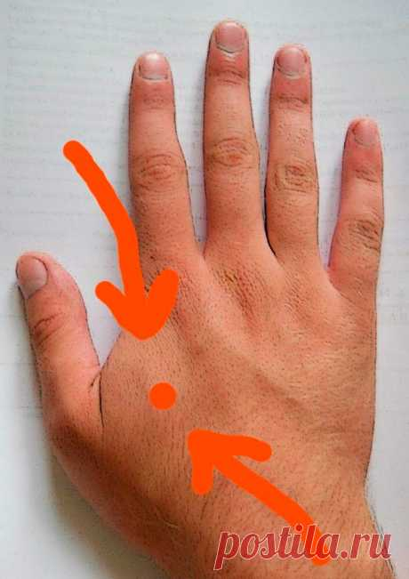 Секреты красоты. Массаж данной точки на руке способен улучшать кровоток и снижать давление за 4 минуты в день. Делюсь методом