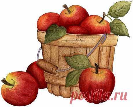 Adorei esse balde com maçãs . | Flickr - Photo Sharing!