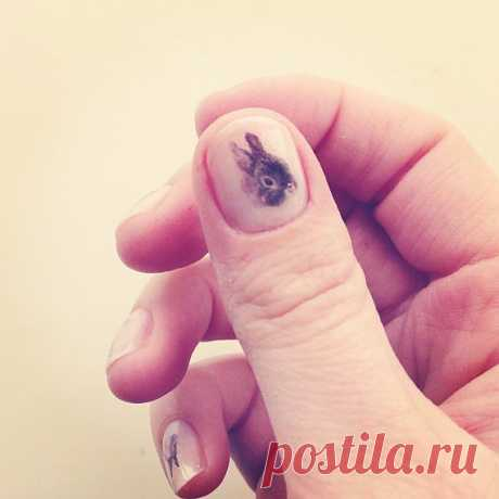 bunny nail transfers 40 rabbit nail art stickers от helloharriet
