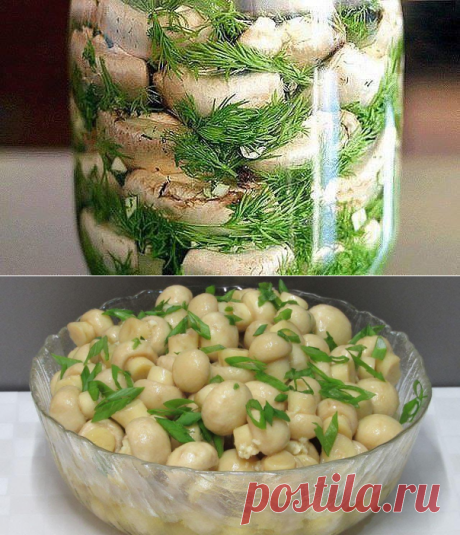 Вкуснейшие малосольные шампиньоны на скорую руку — обалденная закуска!