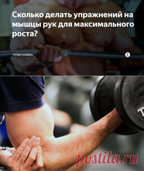 Сколько делать упражнений на мышцы рук для максимального роста? | fitnechannel | Яндекс Дзен