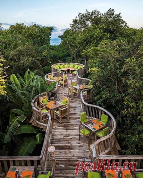 Ужин в джунглях, Мальдивы.