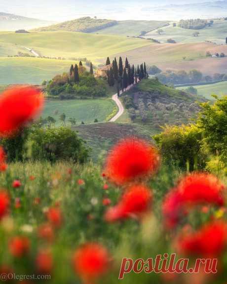 «Удивительная Тоскана, Италия #тоскана #маки #пейзаж #путешествие #ландшафт #tuscany #visittuscany #ig_tuscany #olegrest #olegrestphototour» — карточка пользователя Александр Б. в Яндекс.Коллекциях
