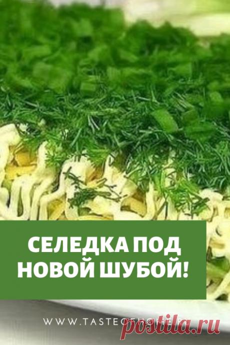 Селедка под новой шубой! - ВКУС ДОМА
