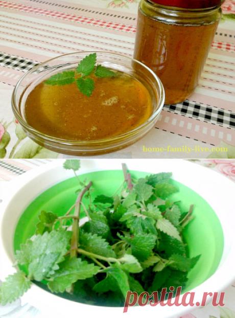 Мятный сироп/Сайт с пошаговыми рецептами с фото для тех кто любит готовить
