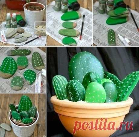 Cactuses from stones