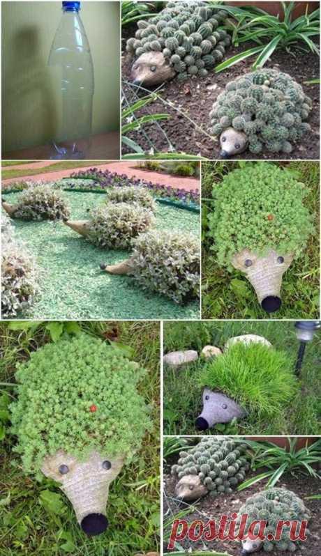 How to successfully grow an herb garden  |  Pinterest • Всемирный каталог идей